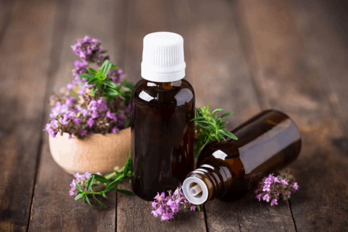 What are the Best Essential Oils to Keep Flies Away
