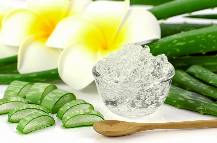 Fruit of The Earth Aloe Vera Gel Review 2019 – A Sensational Gel with Various Health Benefits